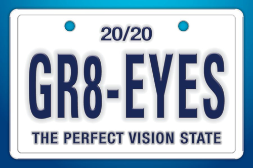 "Picture of Gr8 Eyes License Plate (6"" X 4"")"